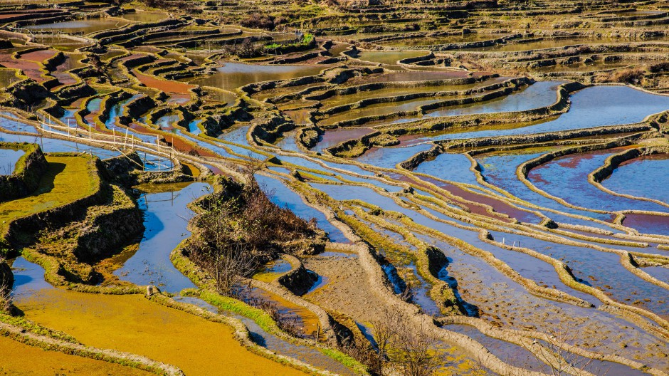 云南箐口梯田旅游景区风景图片
