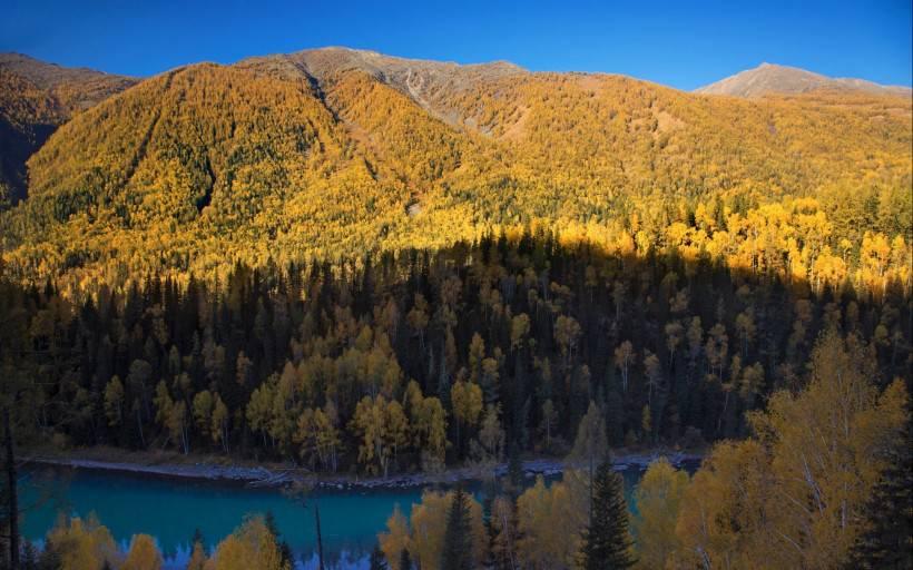 秋天的新疆喀纳斯湖风景图片