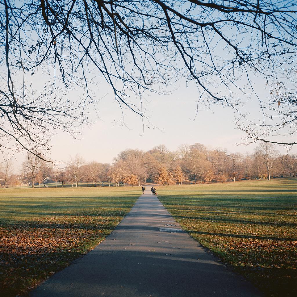 冬天里隐藏的秋天美丽风景图片