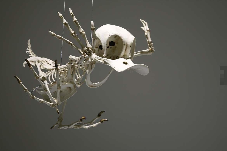 将知名卡通人物打造成有趣骨骼模型