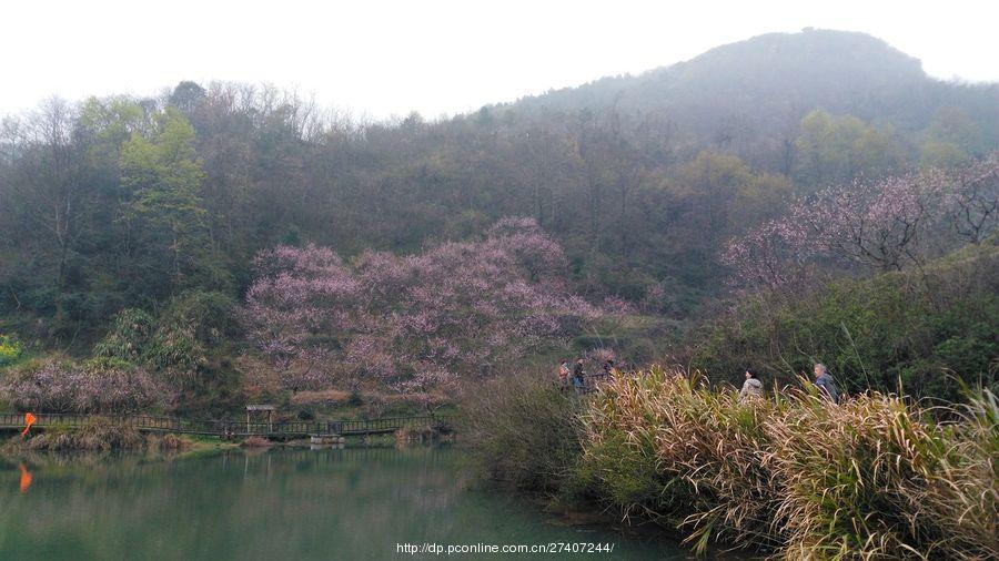 再游沼山风景区(二)