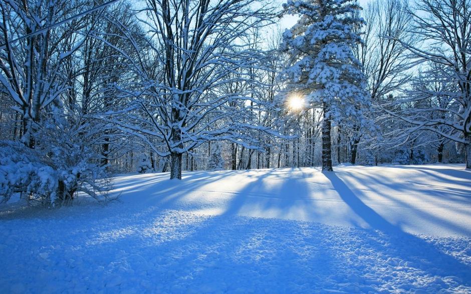 下雪的夜景图片大全 冰天雪地冬天下雪的图片大全高清