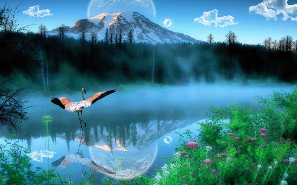 自然风景图片大全