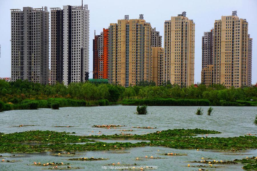 夏日的海阳湿地公园_图片新闻_东方头条