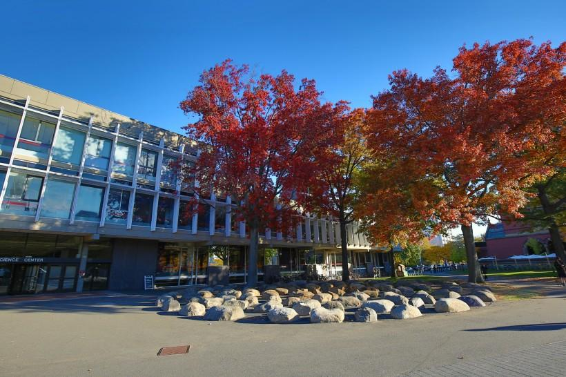 美国哈佛大学校园风景图片