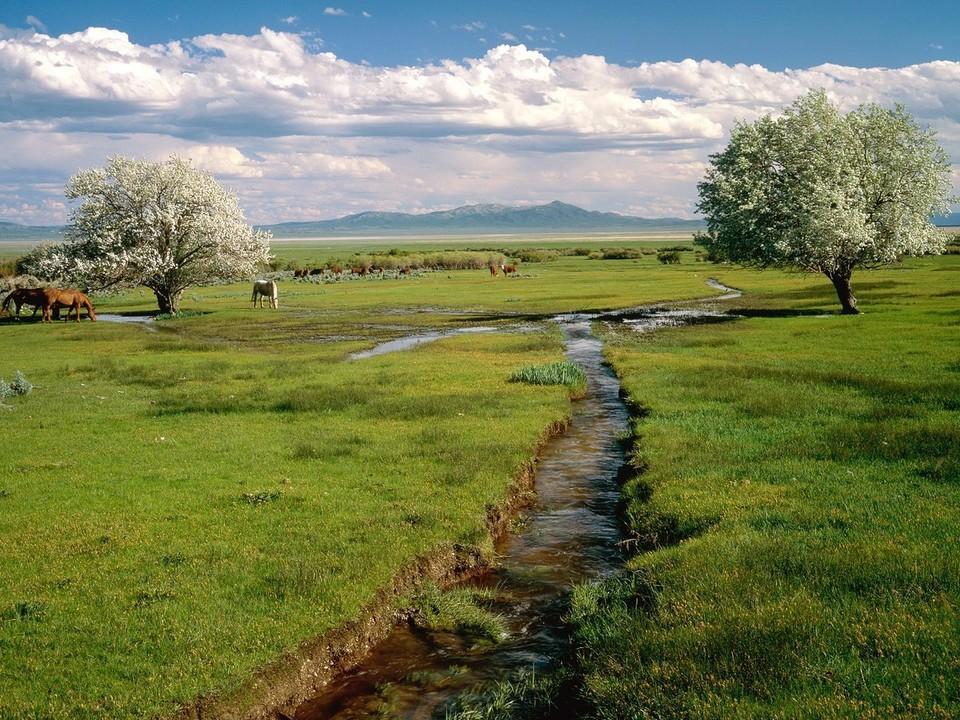内华达州风景桌面壁纸
