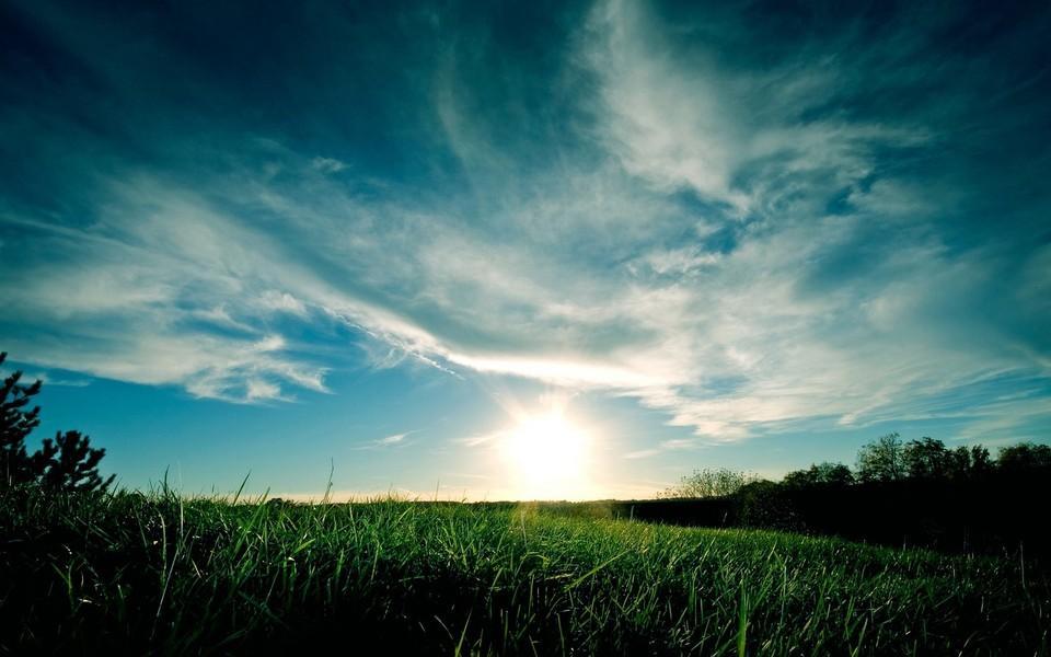 自然随拍暗调风景宽屏壁纸
