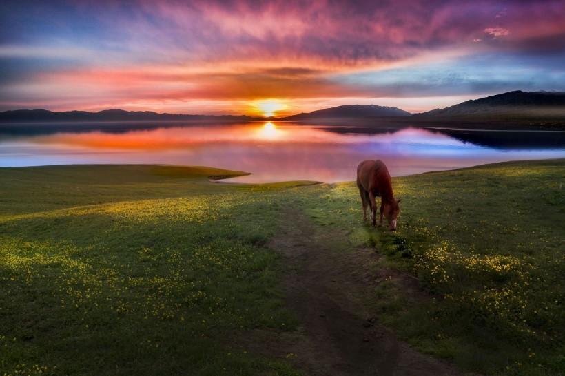 新疆赛里木湖晨曦风景图片