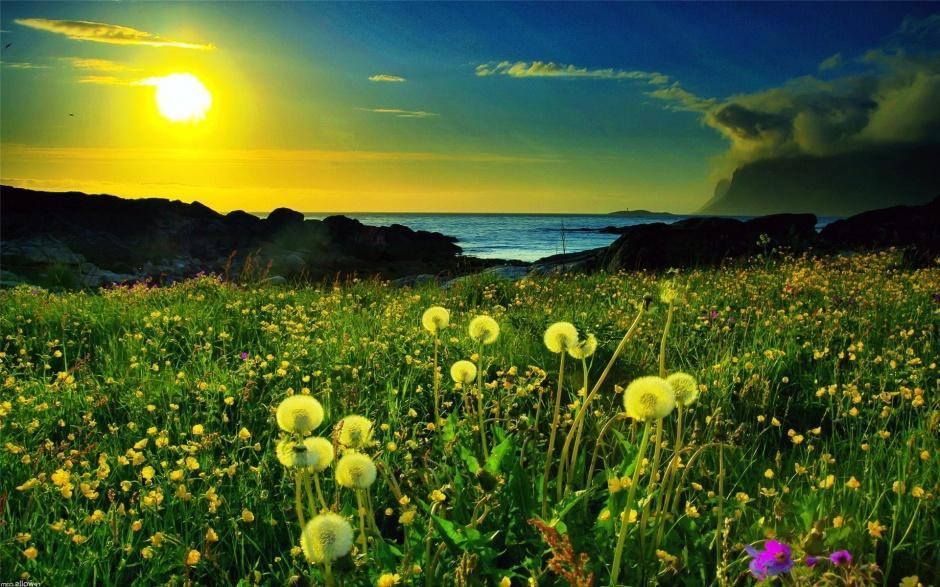 绿色自然风光清新美景图片