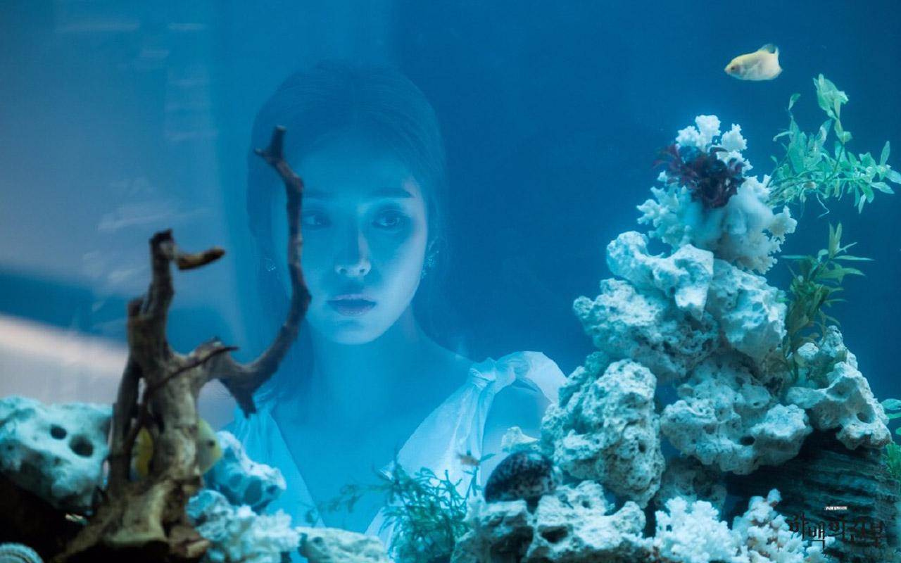 壁纸 海底 海底世界 海洋馆 水族馆 桌面 1280_800