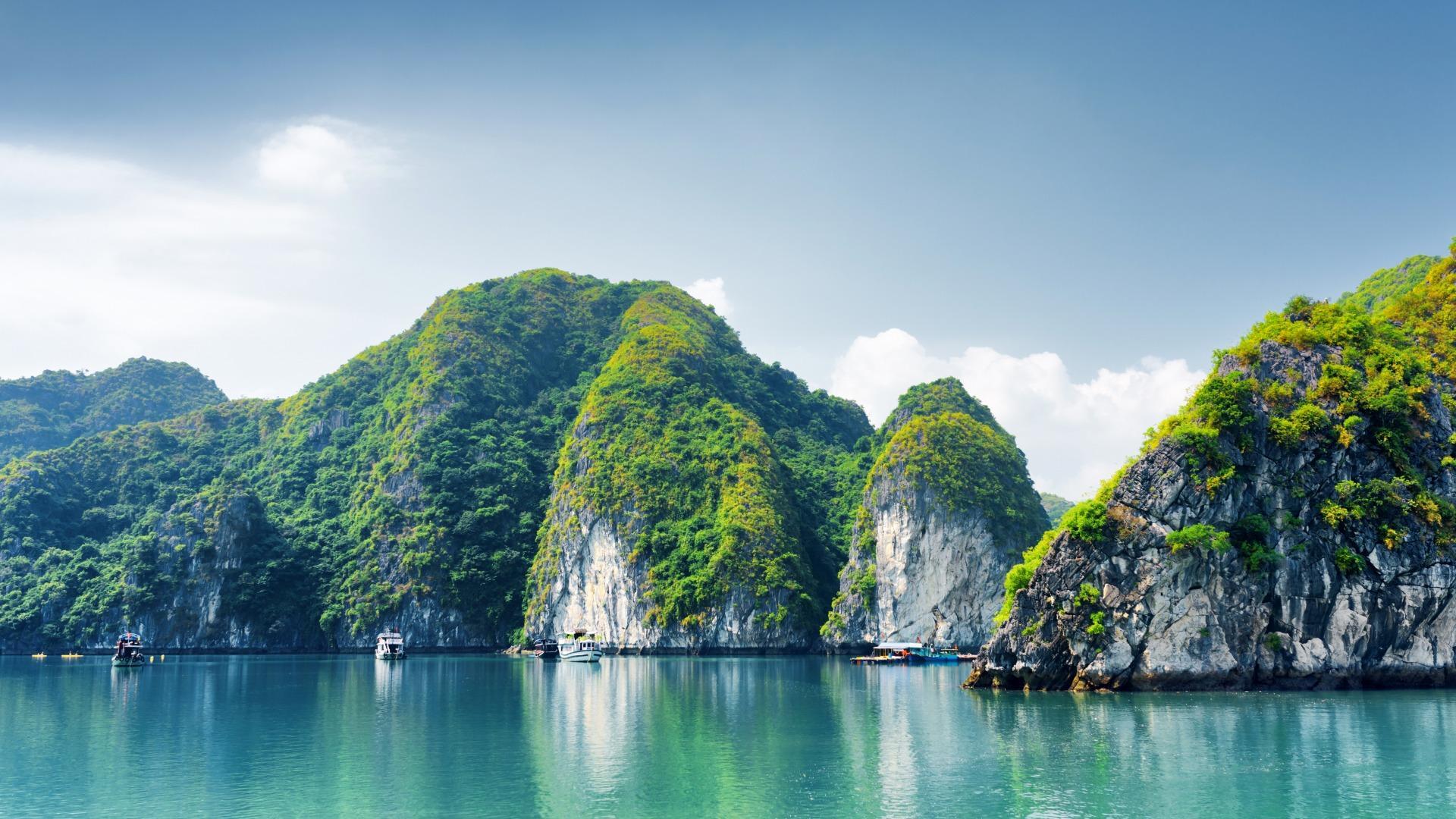 清新的绿色自然风景摄影高清宽屏桌面壁纸