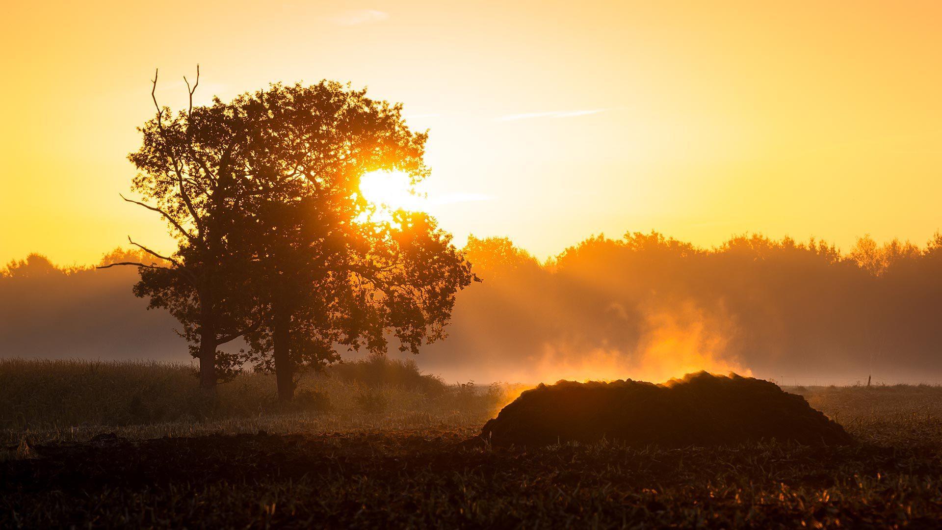 唯美日出日落風景圖片高清寬屏壁紙