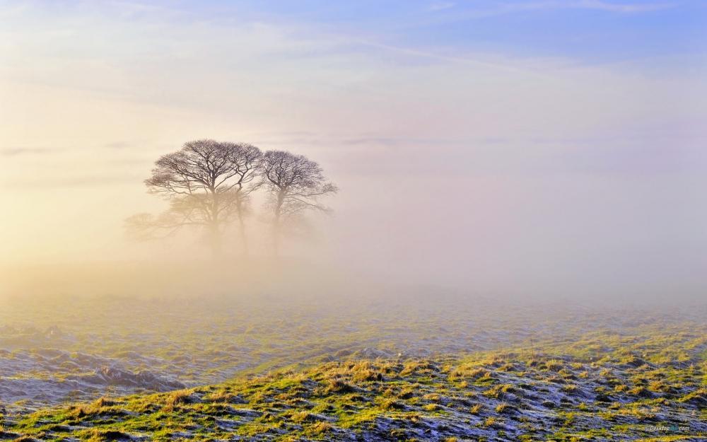 清新早晨云雾缭绕朦胧美风景桌面壁纸第一辑
