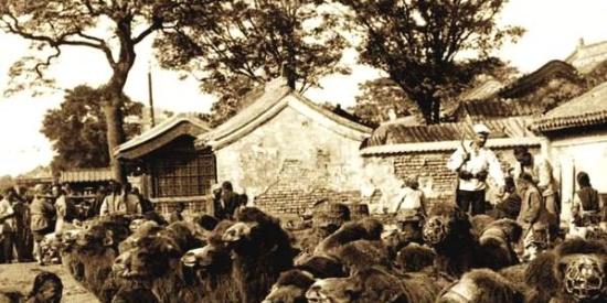 八国联军占领期间的北京平民生活