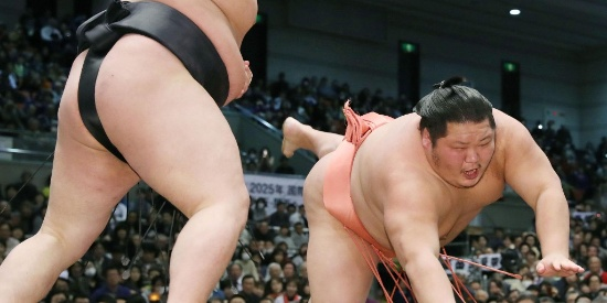 日本相扑比赛现场激烈 网友:裤子有点结实啊!