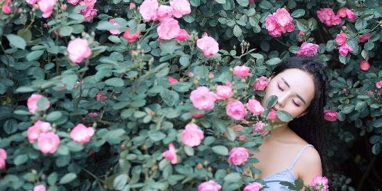 她在花中笑