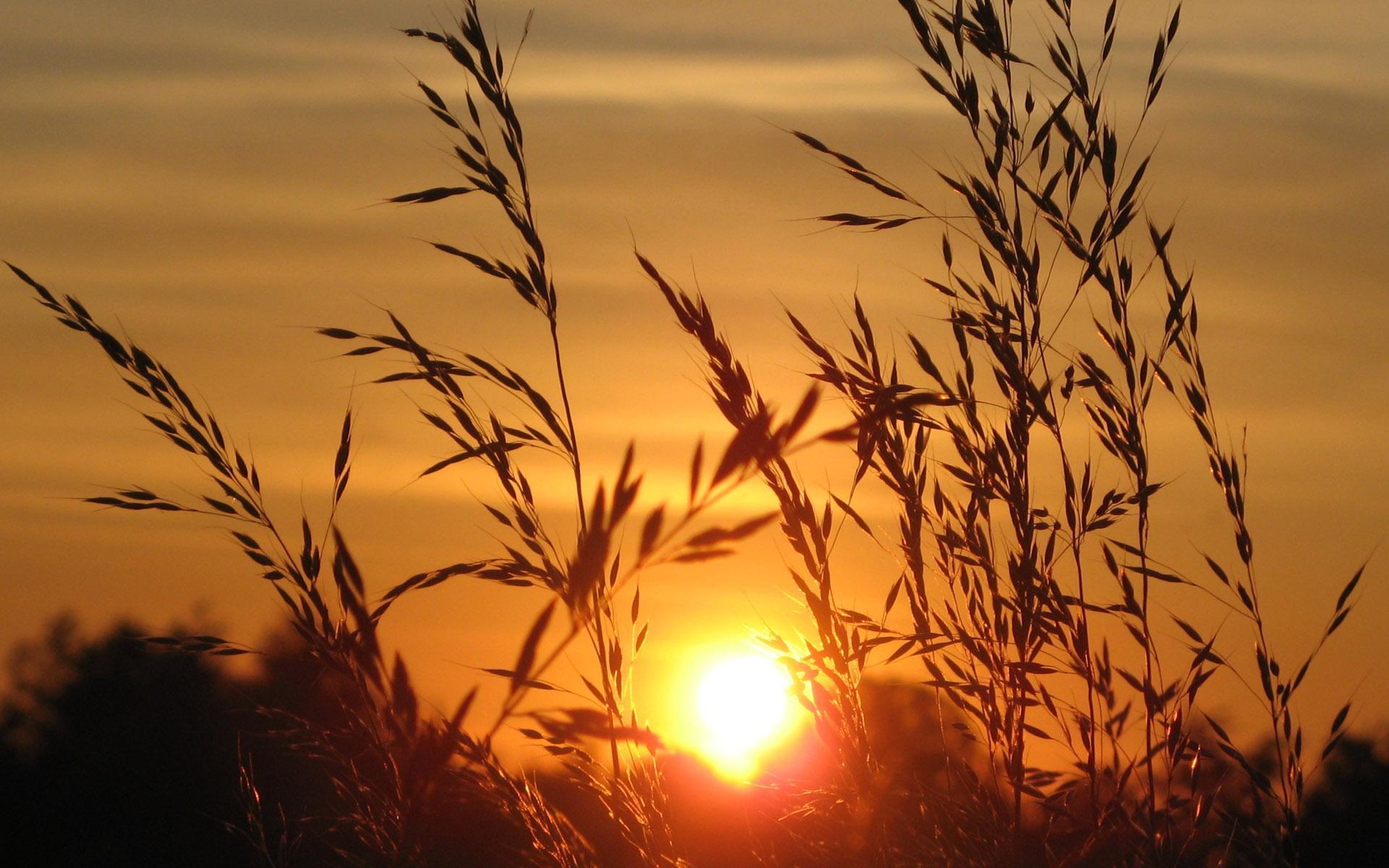 高清唯美夕阳风景图片桌面壁纸