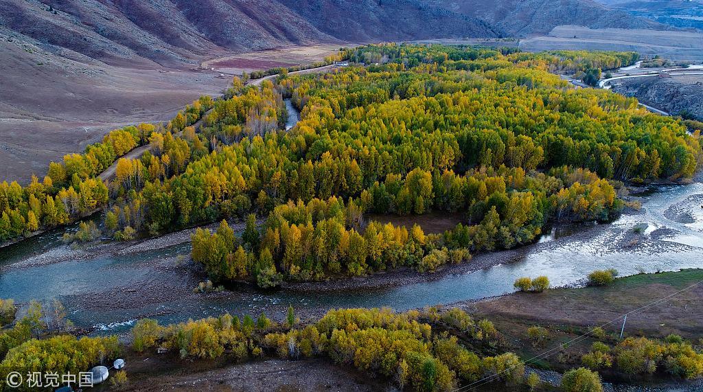 在新疆阿勒泰地区富蕴县可可托海镇拍摄的金秋美景