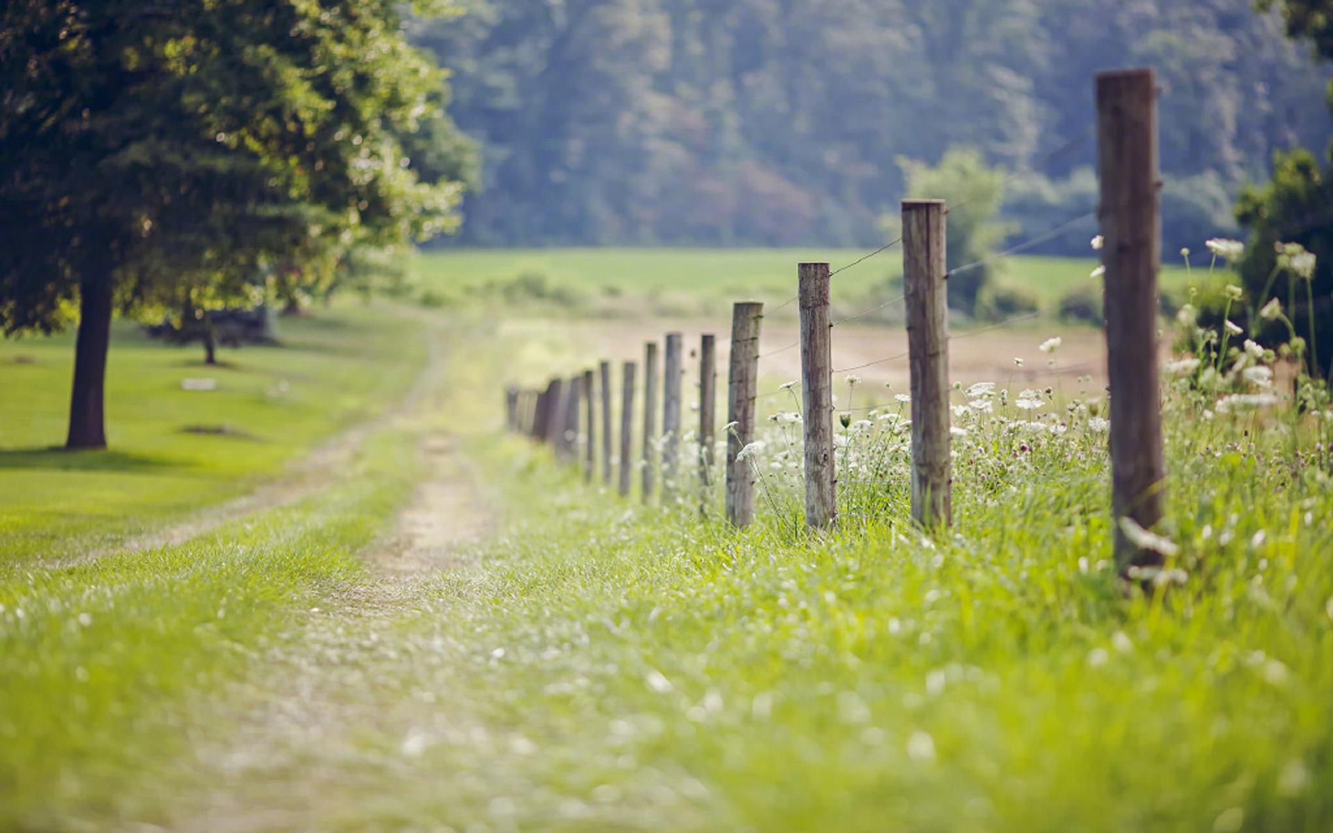 唯美意境自然風景圖片電腦壁紙