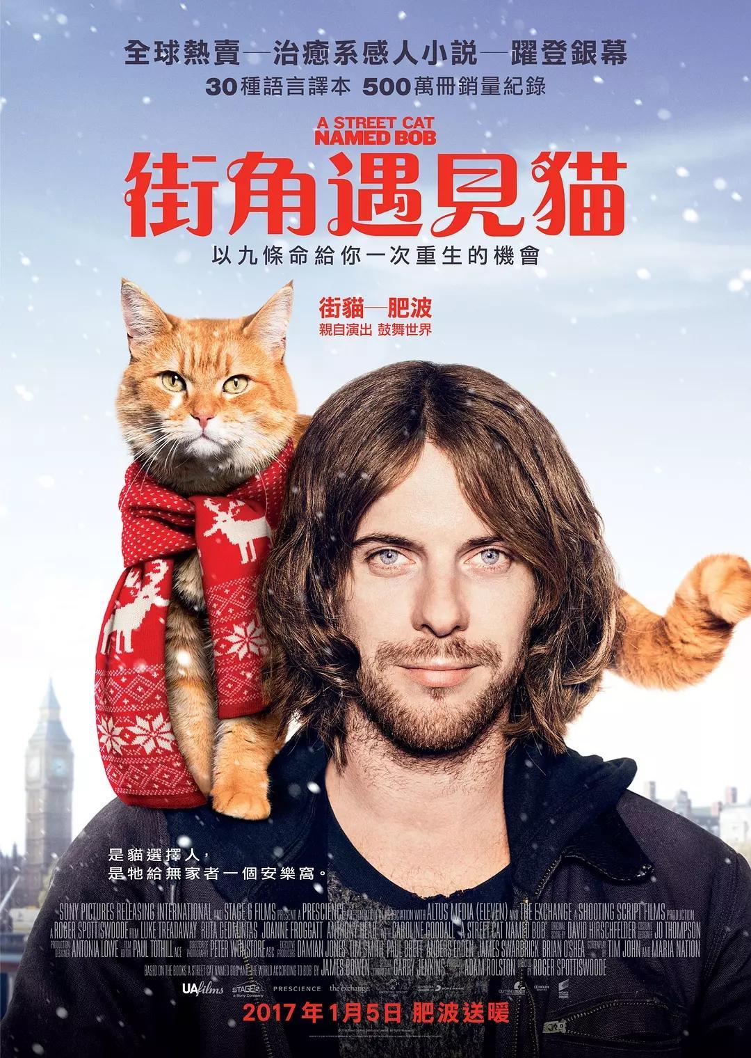 电影《流浪猫鲍勃》海报图片