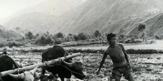 """【巨变·我守卫的热土】这支部队两年打通西藏""""咽喉工程"""""""