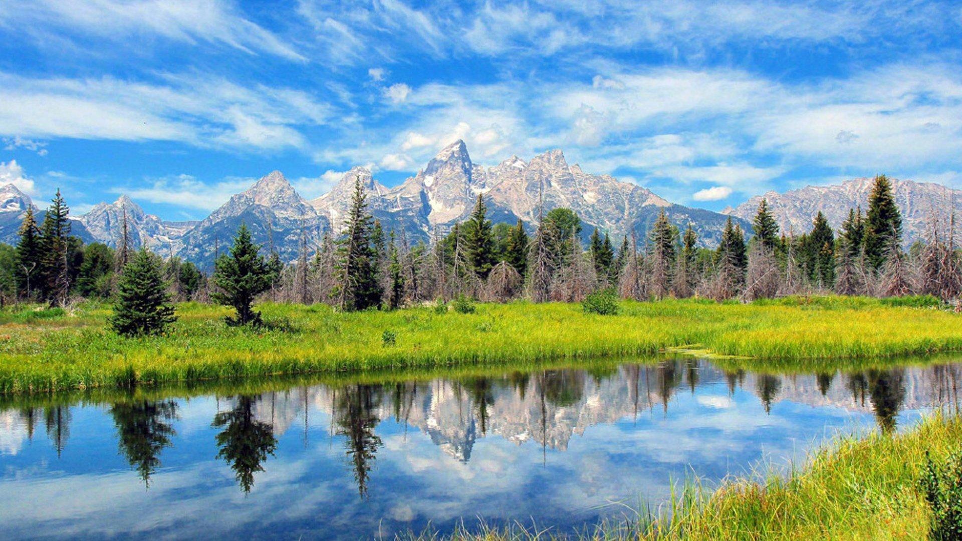 绿色清新养眼自然风景桌面壁纸_图片新闻_东方头条