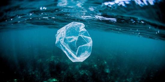 图说海洋中的塑料污染恐怖真相