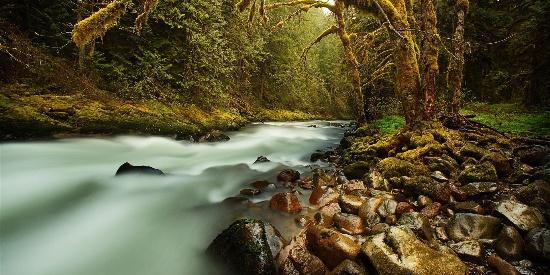 唯美溪流风景高清桌面壁纸