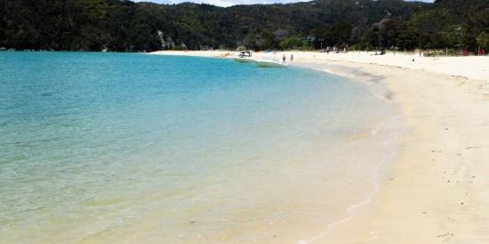 美丽的海滩的图片