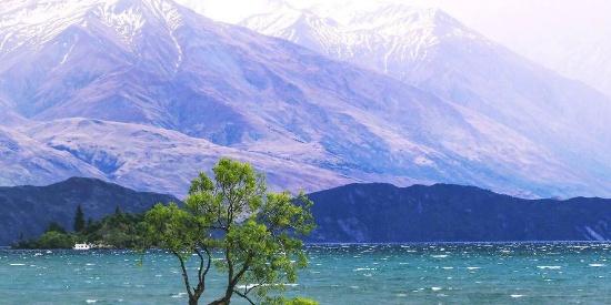 清澈唯美的瓦纳卡湖风景桌面壁纸