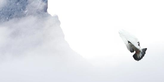 迷雾朦胧的山峰高清桌面壁纸