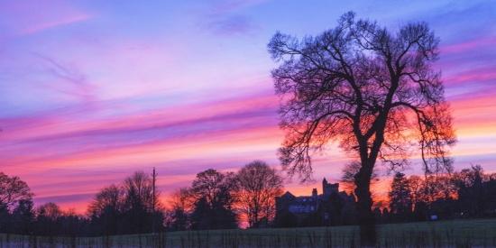 绚丽的紫色晚霞图片