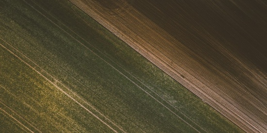 广阔的田野图片