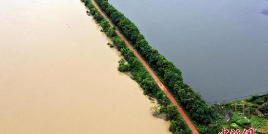 航拍上游洪水汇入南昌湖泊 鄱阳湖水位持续上涨