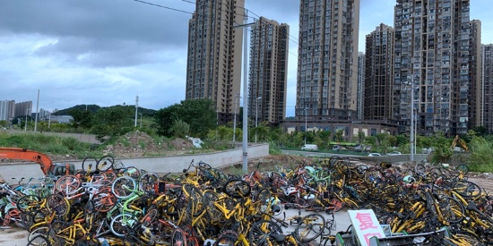 """福州一公园现共享单车""""坟场"""""""