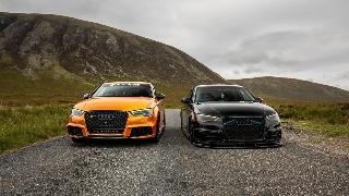 二选一,你喜欢小黑还是小橙?