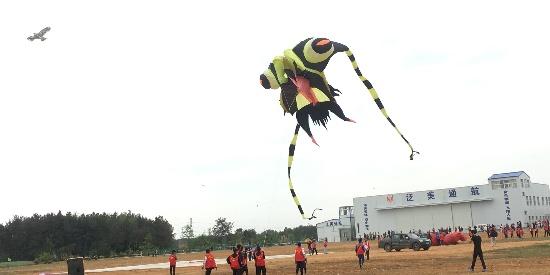 第五届北川民族风筝节 各类风筝翩跹起舞 你见过几个?