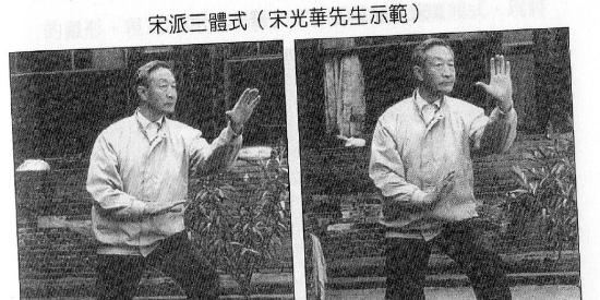 宋氏形意拳嫡传宋光华先生演练的三体式、五行拳和十二形拳照