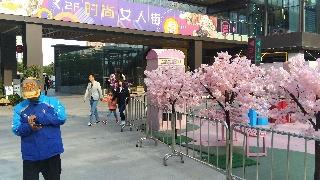 上海浦东曹路,荣欣广场(6)