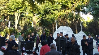 上海宜川公园,2020年菊花展(89)